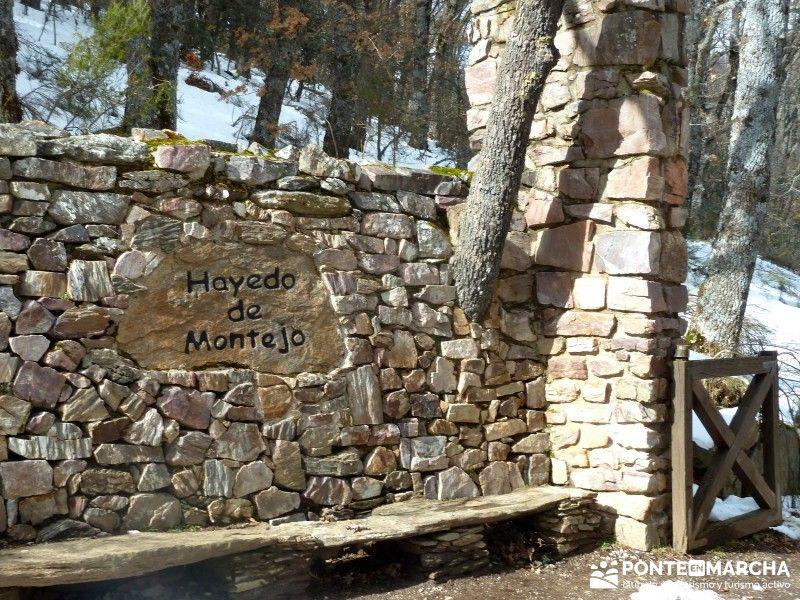 Entrada Hayedo de Montejo - Madrid